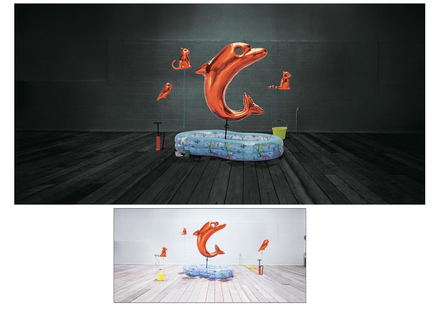 orange_dolphine_agency_fallon 2